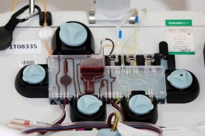 A través del método denominado de aféresis se realiza la extracción de plasma -  REUTERS/Lindsey Wasson