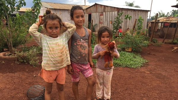 """""""Desde hace 150 años en la cosecha verde trabajan niños"""" (Foto: gentileza Posibl.)"""