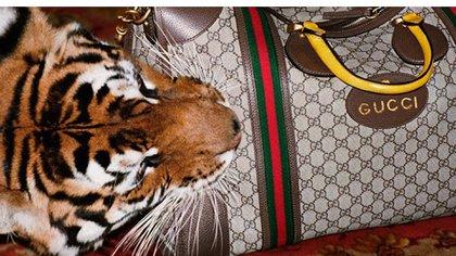 La marca de ropa dealta costura Gucci se sumó a la iniciativa contra la venta y uso de pieles de animales (Sleek-mag. Gucci)