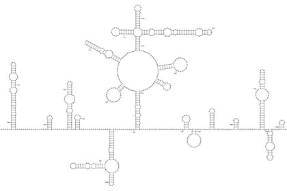 Tammy C. T. Lan et al., bioRxiv