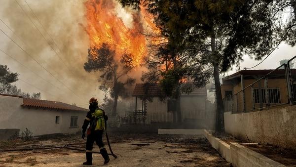 Los incendios en Grecia dejaron un saldo de 82 muertos (AFP)