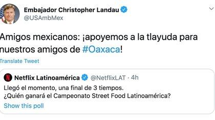 Así fue como el embajador pidió ayuda a los mexicanos (Foto: Captura de pantalla)
