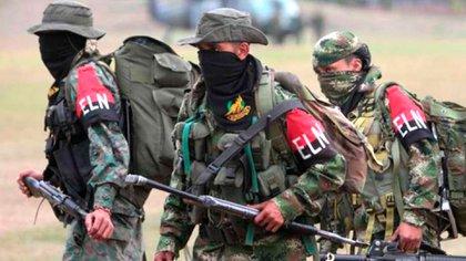 El ELN y disidentes de las FARC reciben protección de la dictadura de Maduro en suelo venezolano