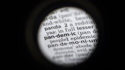 """En esta foto del s�bado 21 de noviembre de 2020, la palabra """"pandemic"""" (pandemia) en un diccionario en Washington. El Merriam-Webster y dictionary.com declararon  """"pandemia"""" como la palabra del a�o. (AP Foto/Jenny Kane)"""