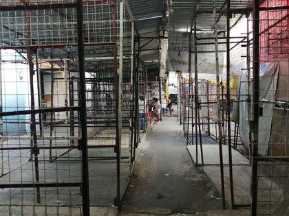 El Gobierno de la Ciudad de México llamó a los comerciantes del Centro Histórico a reducir sus actividades y cerrar debido a la emergencia sanitaria (Foto: EFE/ Mario Guzmán)