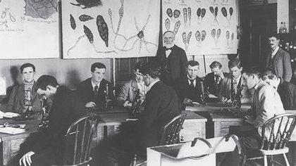 William James Beal comenzó el experimento en 1879. Foto: Michigan State University