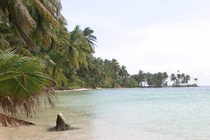 En esta paradisiaca isla hay planes para todos los gustos (Crédito: Prensa Nicaragua)