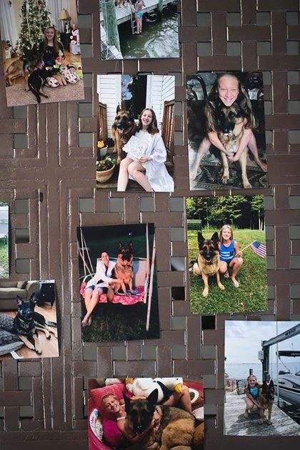 La familia de Buddy reconoció los esfuerzos de los veterinarios para salvar a su perro (National Geographic)