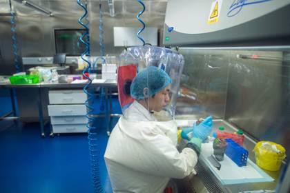 Esta foto de archivo tomada el 23 de febrero de 2017 muestra a un científico dentro del laboratorio P4 en Wuhan, capital de la provincia china de Hubei. (JOHANNES EISELE / AFP)