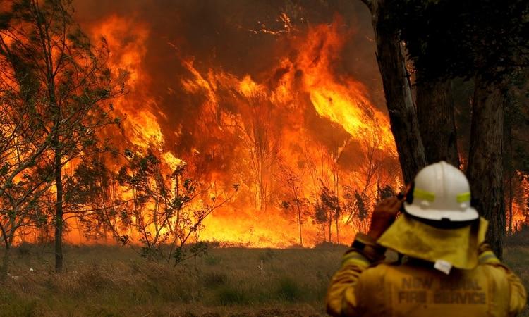 """Resultado de imagen para australia incendios"""""""