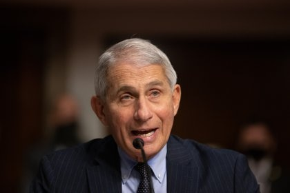 The chief epidemiologist in the US government, Anthony Fauci.  Photo: POOL VIA CNP / ZUMA PRESS