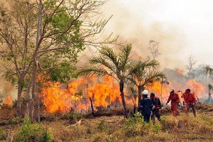 Imagen de archivo de un incendio en Bolivia (EuropaPress)