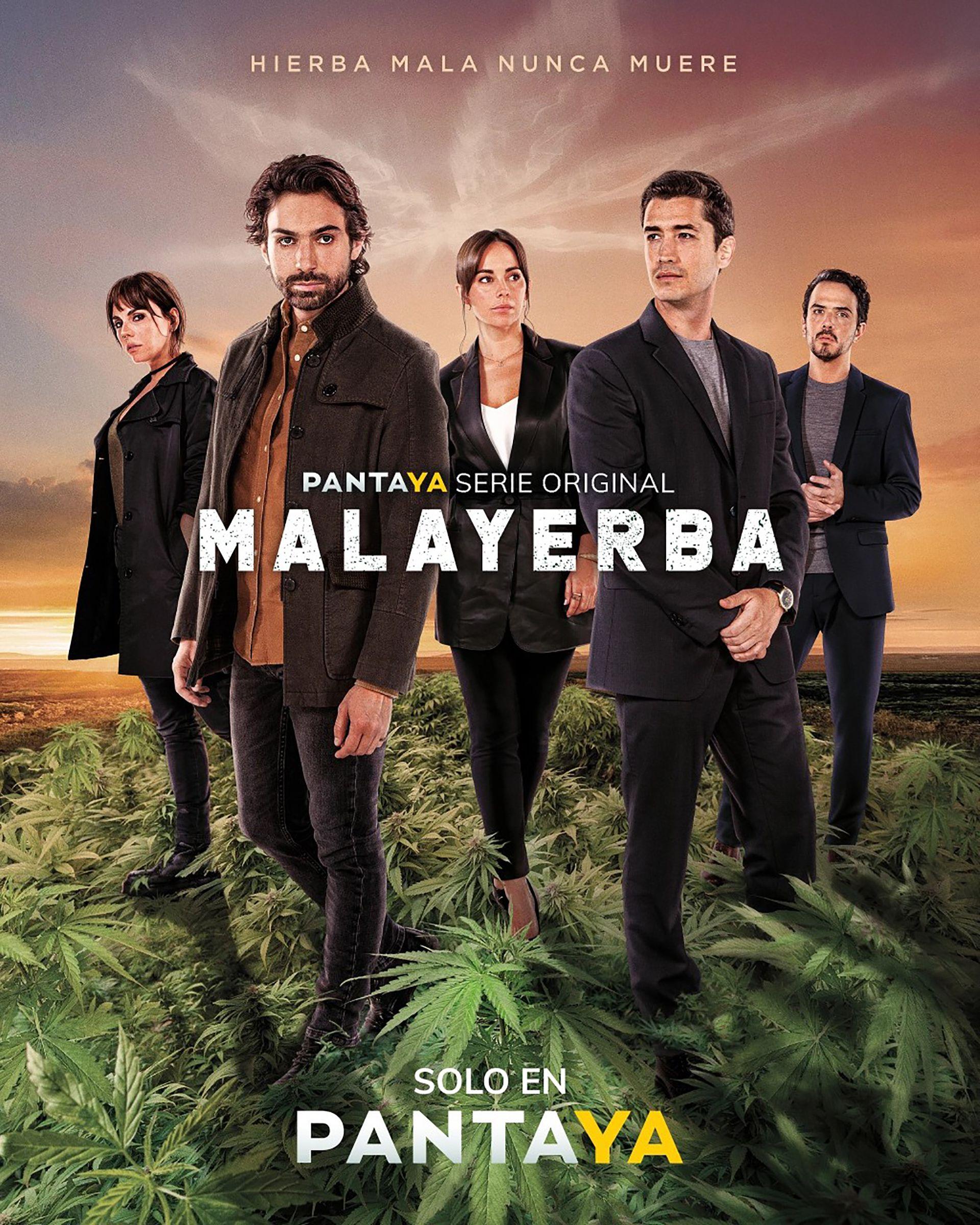 Malayerba