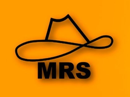 El actual logotipo del MRS lleva el sobrero del guerrillero Augusto C. Sandino. Eso podría cambiar esta semana.