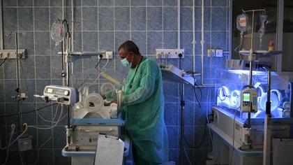 Un doctor revisa a un recién nacido desnutrido dentro de una incubadora en el hospital Al-Sabeen en Sanaa, Yemen (AP Photo/Hani Mohammed)
