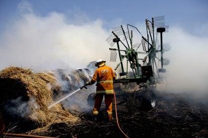 Los miembros del Servicio de Bomberos del País (CFS) apagaron un incendio que alcanzó fardos de heno en una propiedad en Mount Torrens en Adelaide Hills, Australia, el 3 de enero de 2020 (Reuters)