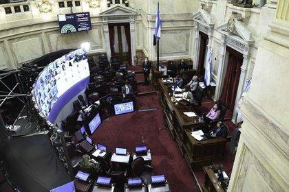 Sesion publica especial remota del Senado para tratar la ley de Teletrabajo.