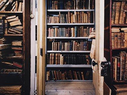 Los expertos coinciden en que una biblioteca personal requiere además criterios personales para su organización