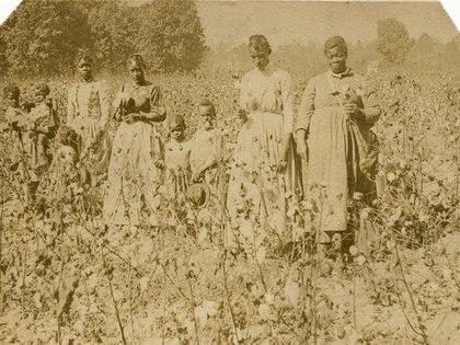 El valor de los esclavos como mano de obra gratuita en 1860 se calculó en USD 3.000 millones. (Smithsonian National Museum of African American History and Culture)