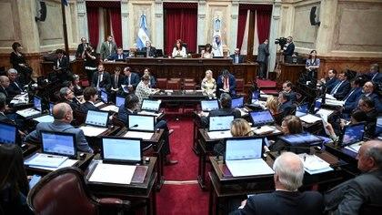 Los senadores de Juntos por el Cambio pidieron sesionar en forma presencial  (Fotos: Charly Diaz Azcue / Comunicacion Senado)
