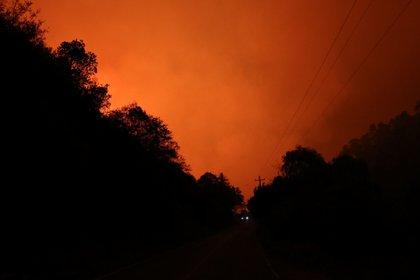 Incendio forestal en Coahuila: 23 casas destruidas, 120 familias afectadas y 3,500 hectáreas consumidas FOTO: ALEJANDRO RODRÍGUEZ/CUARTOSCURO.COM