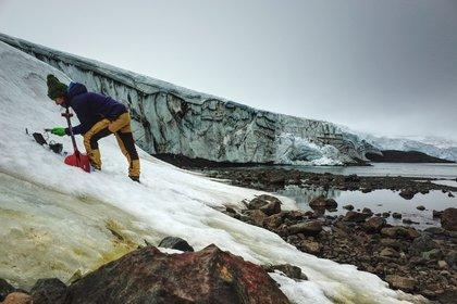 Folleto sin fecha publicada por la Universidad de Cambridge el 20 de mayo de 2020 que muestra a Monika Mendelova tomando muestras de algas en el glaciar Collins, en la Antártida (AFP Photo/ Dr Matt Davey - Universidad de Cambridge/ SAMS)