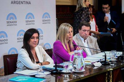 En el centro, María de los Ángeles Sacnun, presidente de la comisión de Asuntos Constitucionales (Foto: Senado)