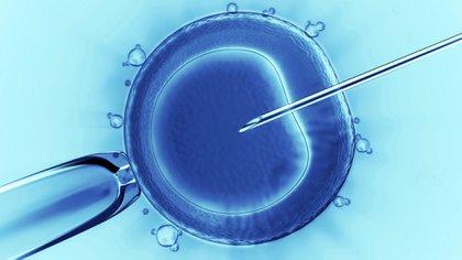 La nueva metodología representa una bisagra en la manipulación de embriones y aún debe demostrar que no implicará riesgos para la especie humana. El Ministerio de Salud de China publicó directivas para frenar el uso no aprobado de tecnologías biomédicas a partir de las primeras bebas nacidas por edición genética en China. (iStock)