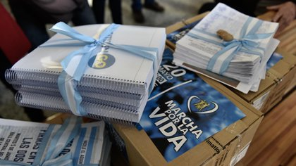 Más de 400 mil firmas para que el aborto no se despenalice
