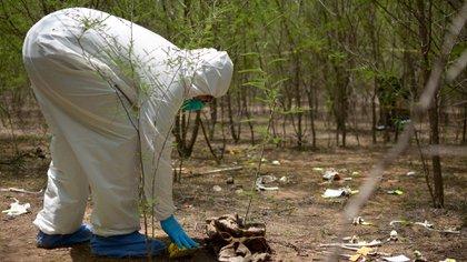 Encuentran restos humanos dentro de al menos 17 bolsas en el municipio de Tala, Jalisco (Foto: Cuartoscuro)