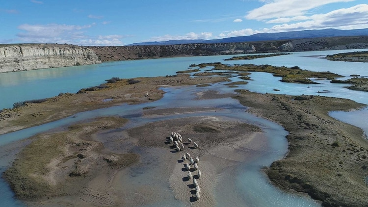 El ecosistema del Río Santa Cruz es rico en biodiversidad