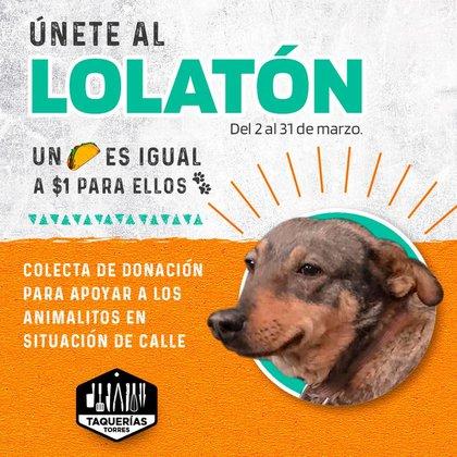 Taquerías Torres han realizado colectas para ayudar a lola y a albergues que cuidan animales de la calle (Foto: Facebook / Taquerías Torres)