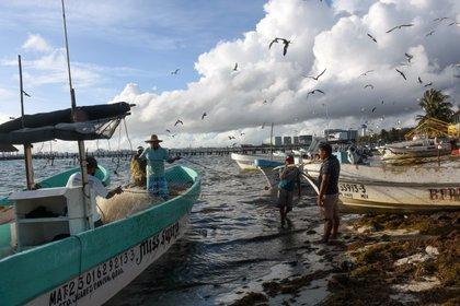 Pescadores de la zona costera de Cancún se preparan para la llegada del huracán Delta (Foto: Elizabeth Ruiz / AFP)