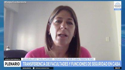 Guadalupe Tagliaferri es una de las senadoras clave en la estrategia a favor de la IVE