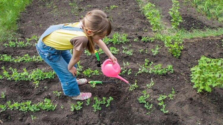 Para el 56% de los padres sus hijos activamente lideran o comparten la responsabilidad de pensar en el medio ambiente (Shutterstock)