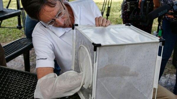 El gobernador de MiamiPhilip Stoddardencabezó un acto en el que se liberaron millones de mosquitos (AFP PHOTO / RHONA WISE)