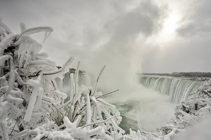 Un arbusto con hielo incrustado en las cataratas Horseshoe Falls en Niagara Falls, Ontario, el 27 de enero de 2021 (Foto de Geoff Robins / AFP).