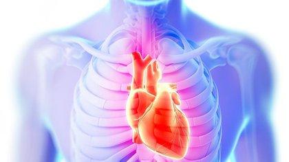 La sobrecarga y vuelta desmedida a una rutina exigente y demandante podría implicar un riesgo para el corazón