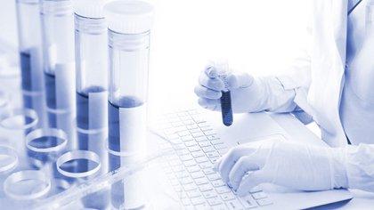 Los CDC de los EEUU trabajan para desarrollar una prueba de serología, o un análisis de sangre que pueda buscar anticuerpos (Shutterstock)