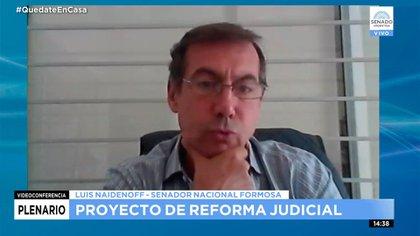 Luis Naidenoff, jefe del interbloque de Juntos por el Cambio
