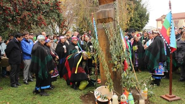 La comunidad Trypay Antú ocupa unas 170 hectáreas en Virgen de las Nieves