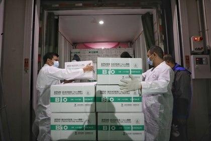 Las vacunas de China ya han catalizado campañas de inmunización en más de 40 países (REUTERS)
