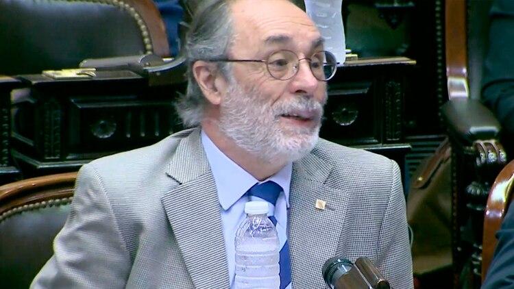 El diputado Tonelli durante su intervención en la sesión en minoría (Diputados TV)