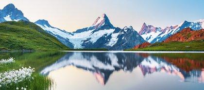 Los suizos tienen lo que muchos llaman el mejor sistema de atención médica del mundo (Shutterstock)