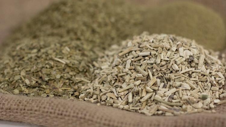 Los elementos esenciales que componen la estructura de la yerba mate