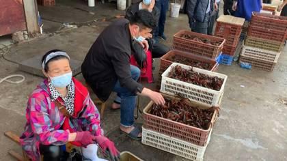 """En un gran mercado de alimentos en la ciudad china de Wuhan los carteles prohíben la venta de animales salvajes y aves de corral, mientras los altavoces reproducen una y otra vez mensajes que celebran la """"victoria"""" sobre el nuevo coronavirus."""