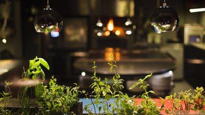 El menú propone una degustación de 12 platos variados y su precio incluye entrada, plato principal, postre (Aramburu)