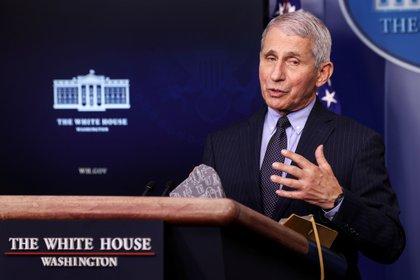 Anthony Fauci, principal epidemiólogo de la Casa Blanca (REUTERS/Jonathan Ernst)