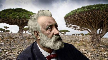 La flora de Socotra iluminó la imaginación de Julio Verne