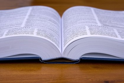 La inclusión de palabras se somete al concenso de los expertos (Foto: Pixabay)